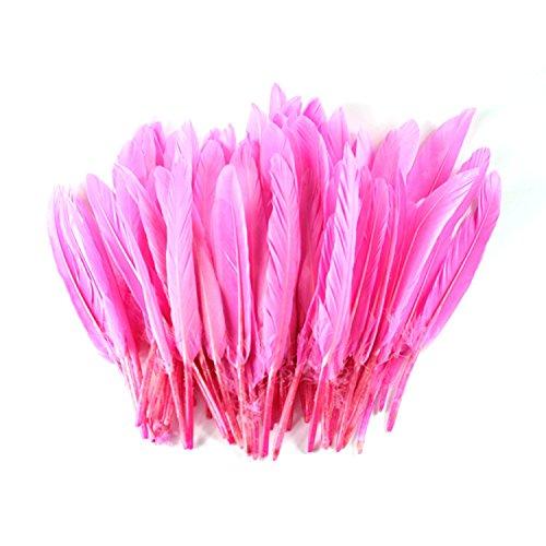 celine-lin-100-gefarbt-home-decor-gansefedern-fur-kunst-home-party-oder-hochzeit-152-203-cm-pink