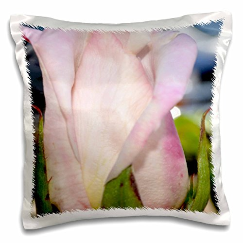 patricia-sanders-flowers-light-pink-rose-bud-16x16-inch-pillow-case-pc-23607-1