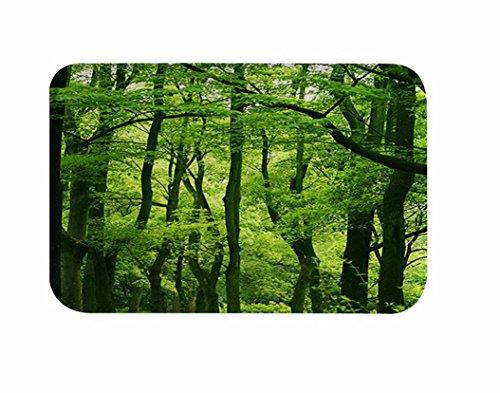 A.Monamour Paisaje De La Naturaleza Árboles