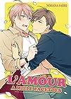 L'amour a mille facettes - Livre (Manga) - Yaoi - Hana Collection
