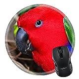 Telecharger Livres MSD en caoutchouc naturel Tapis de souris Image ID 36674105 Oiseaux sur la nature Fond 4491 (PDF,EPUB,MOBI) gratuits en Francaise