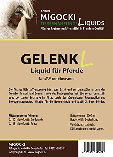 Migocki GELENK Liquid – Ergänzungsfuttermittel für Pferde – mit MSM und Glucosamin – Zum Erhalt und zur Unterstützung gesunder Gelenke, Knorpel, Sehnen sowie des Bindegewebes – Dosierflasche 1000 ml
