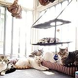 L.S Katzen HängematteKatzenbett Katze Betten Sonnenschein Fenster Fensterplätze (Doppelt, Braun)