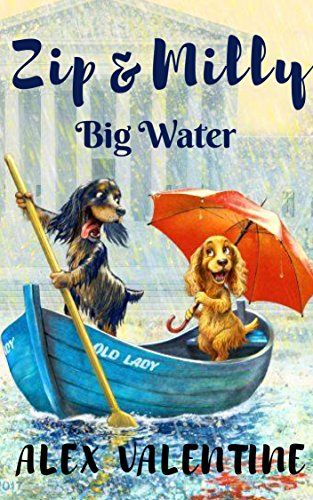ZIP & MILLY: Big Water (complete first season) (English Edition)