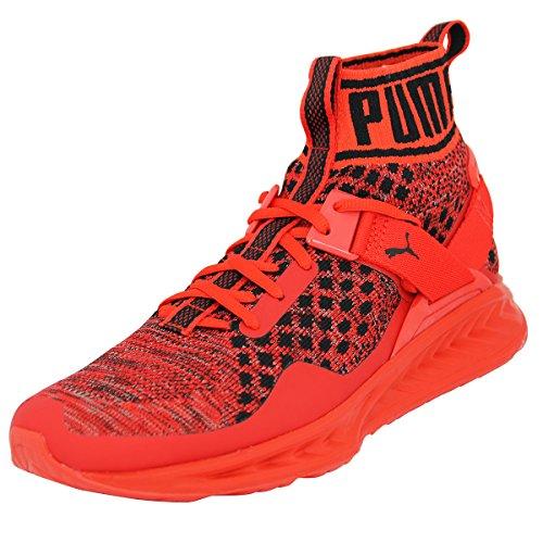 Puma Ignite evoKNIT Sneaker Herren 8.5 UK - 42.5 EU