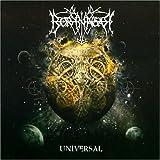 Borknagar: Universal (Ltd.Edition) (Audio CD)