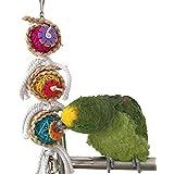 Himolla Bird jouet à mâcher pour perroquet Ara Gris du Gabon Amazones Conure perruche calopsitte Inséparable cacatoès Amazon Cage jouet