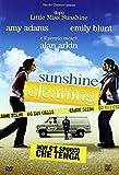 Sunshine Cleaning-Non C'E' Sporco