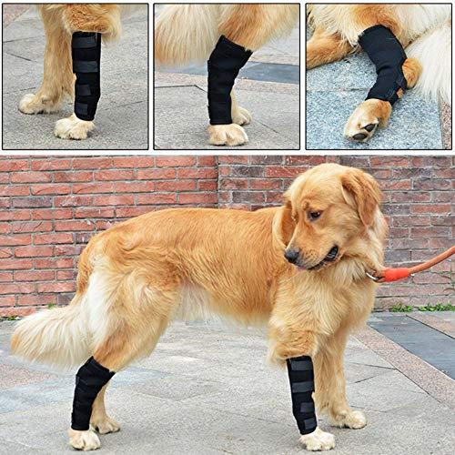 YJZQ 2pcs Hund Sprunggelenk Schutz Bandage 1 Paar Haustier Hunde Handgelenk Bandage Hunde Kniebandage Gelenkbandage Stützbandage Haustier Schutzausrüstung Kniepolster für Hunde,Hundebein-Ärmel