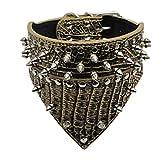 Hmeng Hundehalsband, Hund Katze Haustier Welpen WasserdichtLeather Niet Spiked Nieten Halsband Einfarbig Verstellbar Halsbänder Halskette 5 Farben (M, Gold)