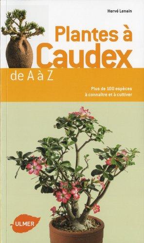 Plantes à caudex de A à Z