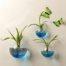 2017 New Hanging Flower Pot Glass Ball Vase Terrarium Wall Fish Tank Aquarium Container Homw Decor