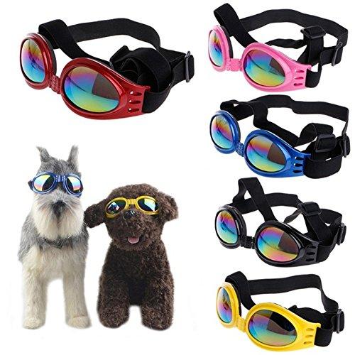 illen Sonnenbrille, zusammenklappbar Eye Wear UV Schutz faltbar Sonnenbrille Objektive Eye Wear Schutz Hund Zubehör, 6Farben (Fuchs Und Hund Halloween)