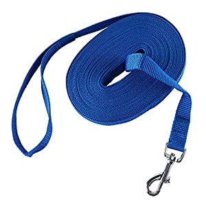 PETCOMER Longue Laisse pour Chien Animal de Compagnie Longe de Dressage en Nylon Corde pour Entraînement Formation Promenade Jogging
