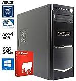 SNOGARD KOMPLETT PC Office Computer Pentium G4500 8GB DDR4 240GB SSD DVD-RW Win10Pro