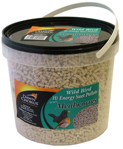 Dawn Chorus Talgpellets mit Mehlwürmern, im Eimer, - Products Dawn Food