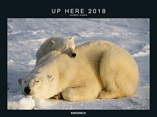 2018 Up Here Poster Calendar -  Animal Calendar - 64 x 48 cm