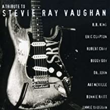 Tribute to Stevie Ray Vaughan [Import allemand]