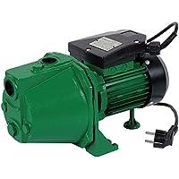 Ribiland 01314 Pompe à Eau de Surface Vert 970 W