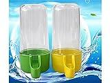 PanpA Sostenibile Pratico recipiente per bere acqua in plastica per abbeveratoi per colombe per uccelli. Colore parrot-casuale