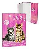 """Heftordner / Ordner A5 - """" süße Katzen - Katze """" - für Hefte, Zettel und Mappen - Gummizugmappe & Heftmappe - Mappe Ordnermappe / Ordnungsmappe Hefter Heftbox - A 5 - Kinder Kätzchen"""