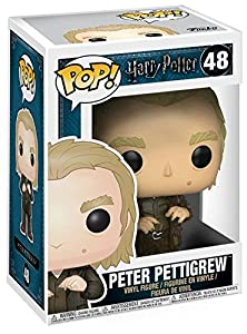Harry Potter Peter Pettigrew Vinyl Figure 48 Collector's figure