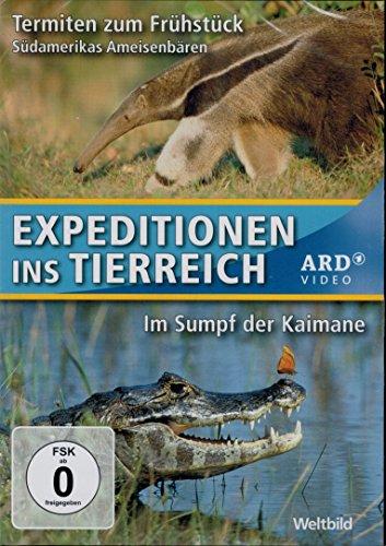 Termiten zum Frühstück: Südamerikas Ameisenbären & Im Sumpf der Kaimane