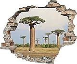 3D-Effekt Wandtattoo 'Afrikanischer Affenbrotbaum' | Aufkleber | Durchbruch | selbstklebendes Wandbild | Wandsticker | Stein | Wanddurchbruch | Wandaufkleber | Tattoo | 60 x 50 cm