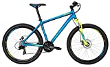 Bulls Mountainbike Wildtail Disc 26