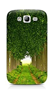 Amez designer printed 3d premium high quality back case cover for Samsung Grand Neo Plus (Green leafage summer)