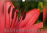 BlütenporträtAT-Version (Wandkalender 2017 DIN A4 quer): Ein Blütenporträt komponiert aus Makro- und Nahaufnahmen. (Monatskalender, 14 Seiten ) (CALVENDO Natur)