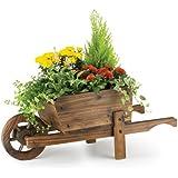 Rustic Garden Supplies - Carriola ornamentale, per piante, BAR5/B