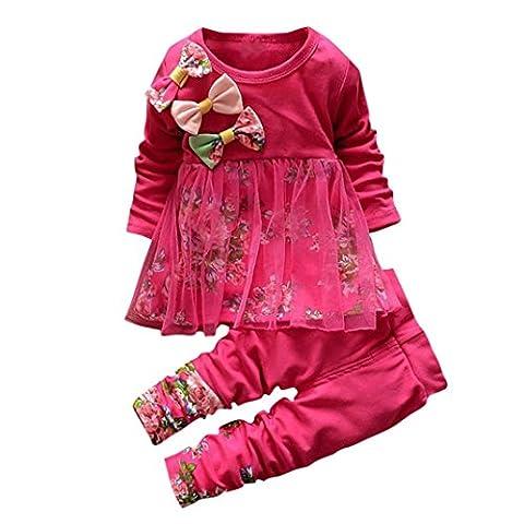 Janly Kleinkind scherzt Baby-Mädchen-Blumenkleid-T-Shirt Oberseiten-Kleid-Hosen 2PCS Ausstattungs-Set (12M, Pink)