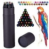 Colouring Pencils, Surcotto 24 Drawing Pencils, Coloured Pencils sketching pencils Artist Pencil Set