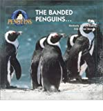 [( The Banded Penguins... * * )] [by: Kimberly Joan Williams] [Dec-2001]