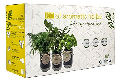 cultivea set completo - fai crescere le tue di erbe aromatiche - 100% semi ecologici e biologici francesi - semi con 3 vasetti di vetro (salvia, aneto, basilico limone) - do it yourself -