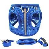Y&G Imbracature Gilet PET, Traspirante Outdoor Forte Gilet Dog Imbracature Con Cani Piccoli E Grandi, Blu, 4 Dimensioni,S
