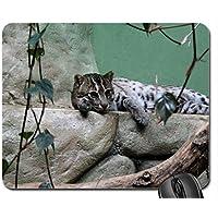 Nizza gatto mouse pad, Mousepad (Gatti Mouse Pad) #030 - Nizza Mouse Pad