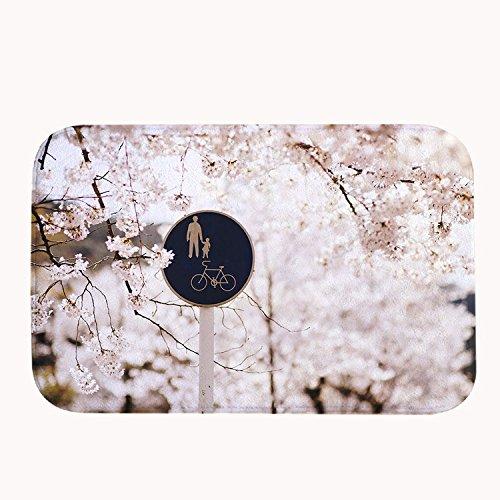 Rioengnakg super assorbente antiscivolo primavera fiori tappetino da bagno in pile corallo tappeto zerbino d' ingresso tappeto tappetini per anteriore esterno porte, 20