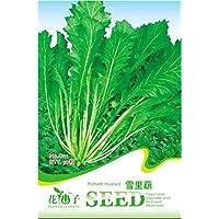 Go Garden El paquete original 50 salados Vegetable Seeds Brassica Juncea potherb mostaza C111