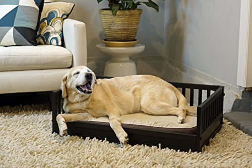 New Age Pet ecoFLEX Dog Bed w/Removeable Cushion