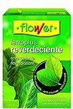 Flower 15502 15502-Reverdeciente, 250 g, No No Aplica 10.3x3.7x14.5 cm