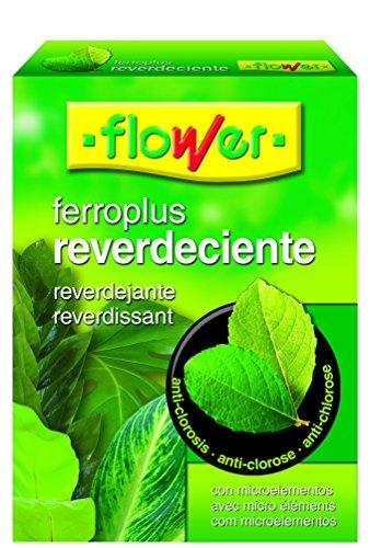 Flower 15502 Ferro-Plus reverdissant 250 g