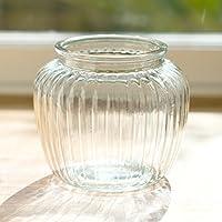 Costine bolla di vetro fiore vaso