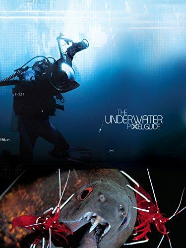 the-underwater-pixelguide