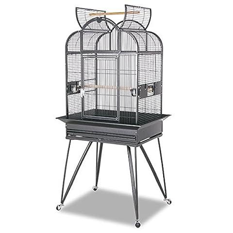 Havana bird cage by MONTANA (R) in antic