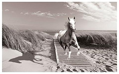 Photo Wallpaper HORSE ANIMAL Wall Mural (3136VE) (312cm x 219cm (WxH))