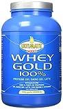 Ultimate Italia WGV1500 Whey Gold 100% Proteine del Siero del Latte - 1500 gr