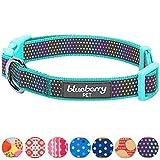 Blueberry Pet Zauberhafter Regenbogen Buntes Reflektierendes Tupfen Holo Hundehalsband in Mintblau, Hals 37cm-50cm, M