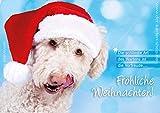 3 Stück Weihnachtskarten Doppelkarte mit Kuvert Karte Weihnachten Weihnachtskarte süßer Hund mit Nikolausmütze